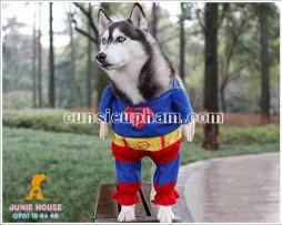 Cunsieupham.com - facebook.com/juniehouse.petshop - Chuyên cung cấp các sản phẩm đẹp - độc - lạ cho cún