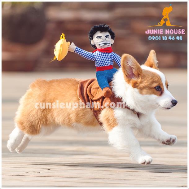 Quần áo siêu nhân Junie House - Trang phục hiệp sĩ cao bồi cho chó - Đồ Minions - Đò cướp biển cho chó