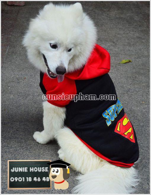 Áo superman cho chó lớn - Balo cho chó mèo - quần áo khủng long cho chó mèo - quần áo tết cho chó mèo - trang phục siêu nhân Junie House - Trang phục hiệp sĩ cao bồi cho chó - Đồ Minions - Đồ cướp biển cho chó