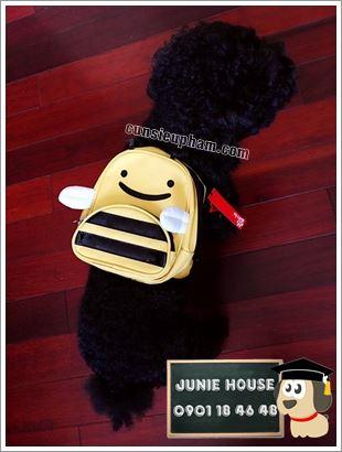 Balo ong vàng cho chó mèo - Áo superman cho chó lớn - Balo cho chó mèo - quần áo khủng long cho chó mèo - quần áo tết cho chó mèo - trang phục siêu nhân Junie House - Trang phục hiệp sĩ cao bồi cho chó - Đồ Minions - Đồ cướp biển cho chó