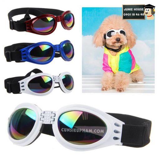 Junie House chuyên cung cấp trang phục cosplay cho chó mèo như áo Adidog có mũ, hiệp sĩ cao bồi, trang phục Superman, Cướp biển, kính mát cho chó mèo... Hotline 0901 18 46 48