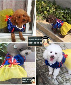 Váy Bạch Tuyết cho chó mèo - kimono cho chó mèo - Balo ong vàng cho chó mèo - Áo superman cho chó lớn - Balo cho chó mèo - quần áo khủng long cho chó mèo - quần áo tết cho chó mèo - trang phục siêu nhân Junie House - Trang phục hiệp sĩ cao bồi cho chó - Đồ Minions - Đồ cướp biển cho chó - 0901 18 46 48
