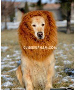 Junie House chuyên cung cấp trang phục cosplay cho chó mèo như áo Adidog có mũ, hiệp sĩ cao bồi, trang phục Superman, Cướp biển, bờm sư tử cho chó lớn... Hotline 0901 18 46 48