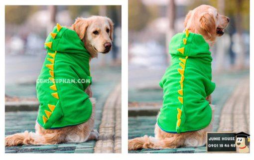 Junie House chuyên cung cấp trang phục cosplay cho chó mèo như áo Adidog có mũ, hiệp sĩ cao bồi, trang phục Superman, Cướp biển, mũ hoàn châu công chúa cho chó mèo, áo khủng long cho chó lớn... Hotline 0901 18 46 48