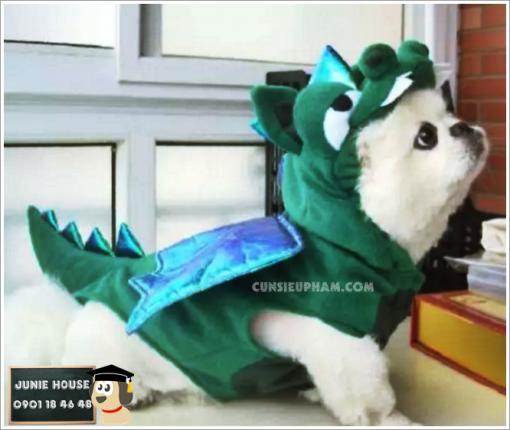 Junie House chuyên cung cấp trang phục cosplay cho chó mèo như áo Adidog có mũ, hiệp sĩ cao bồi, trang phục Superman, Cướp biển, Áo khủng long đuôi gai cho chó mèo... Hotline 0901 18 46 48
