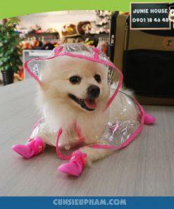 Junie House chuyên cung cấp trang phục cosplay cho chó mèo như áo Adidog có mũ, hiệp sĩ cao bồi, trang phục Superman, Cướp biển, áo mưa cho chó mèo... Hotline 0901 18 46 48