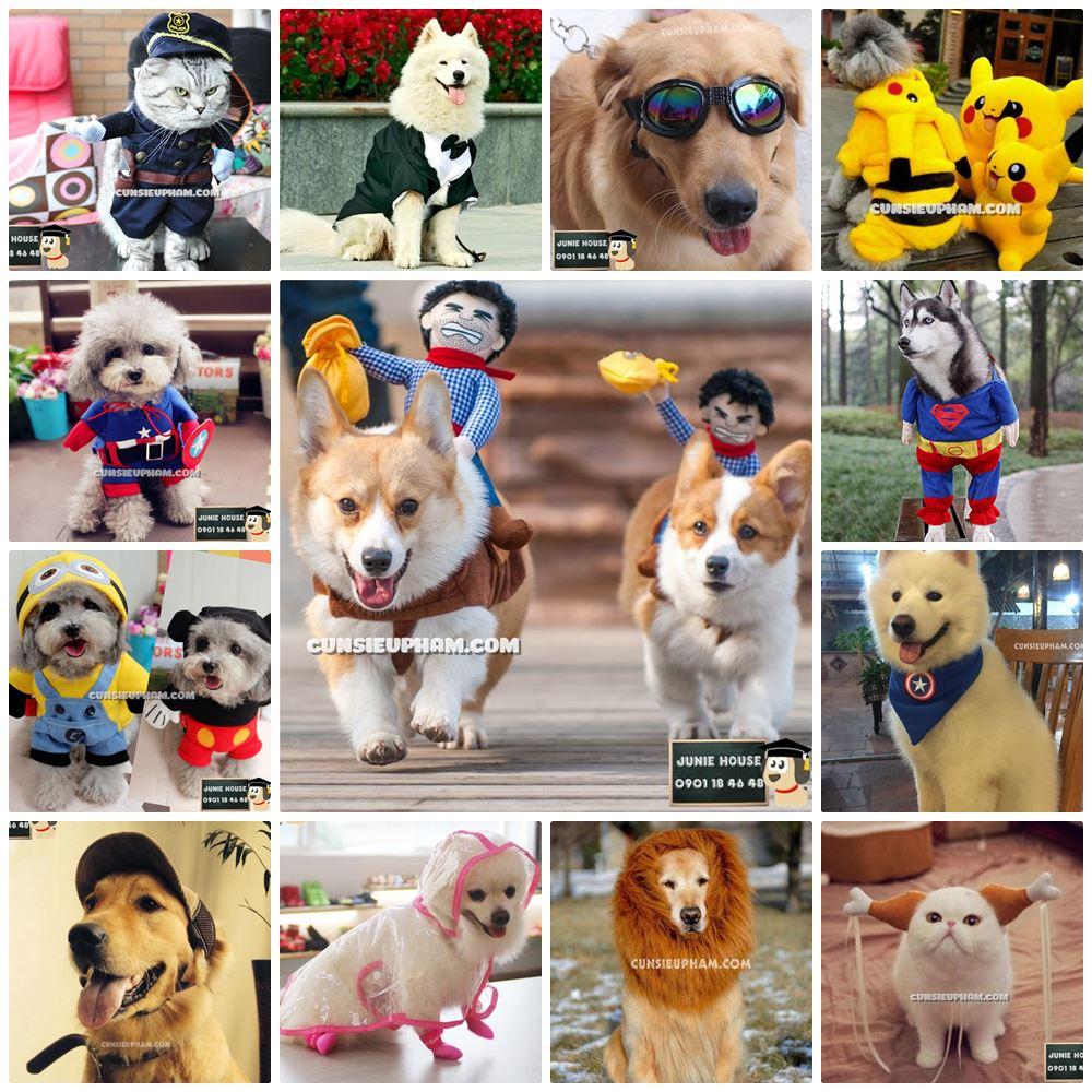 Một số sản phẩm best seller dành cho chó mèo tại Junie House - Cún siêu phàm