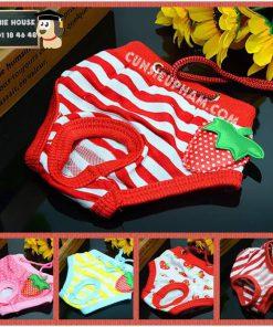 Junie House chuyên cung cấp trang phục cosplay cho chó mèo như áo Adidacog có mũ, hiệp sĩ cao bồi, trang phục Superman, Cướp biển, quần chip cho chó mèo... Hotline 0901 18 46 48
