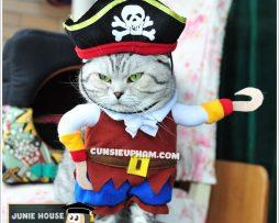 Junie House chuyên cung cấp trang phục cosplay cho chó mèo như áo Adidacog có mũ, hiệp sĩ cao bồi, trang phục Superman, Cướp biển, trang phục cướp biển cho chó mèo nhỏ... Hotline 0901 18 46 48