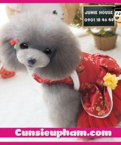 Junie House chuyên cung cấp các mẫu quần áo chó mèo như váy tết cho chó mèo, kimono cho chó mèo, Superman, Minions... Hotline 0901 18 46 48