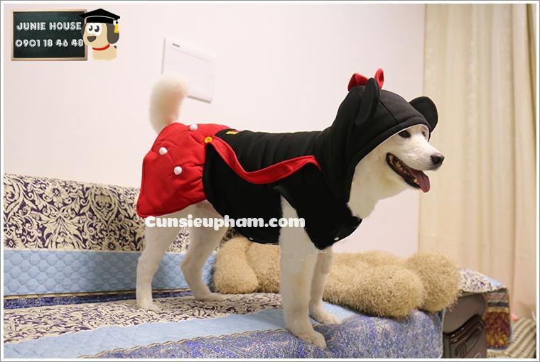 Junie House chuyên cung cấp quần áo cho chó, quần áo chó mèo, đồ chơi cho chó mèo, phụ kiện cho chó mèo, đồ cosplay mickey cho chó lớn... Hotline 0901 18 46 48
