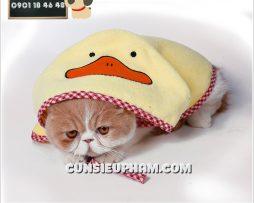 Junie House chuyên cung cấp quần áo cho chó, quần áo chó mèo, đồ chơi cho chó mèo, phụ kiện cho chó mèo, áo choàng đi mưa cho chó mèo... Hotline 0901 18 46 48
