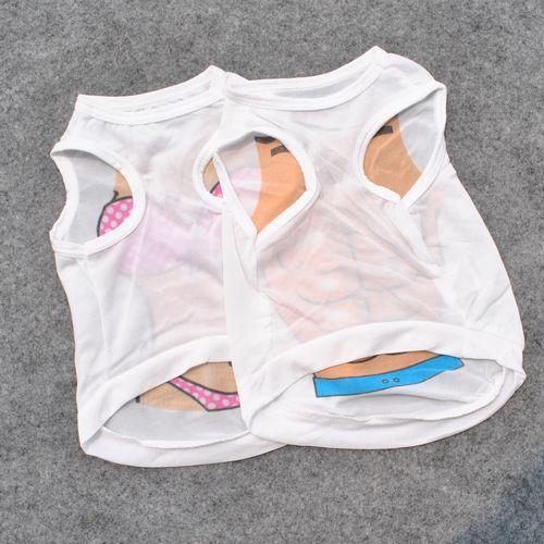 Junie House chuyên cung cấp quần áo, phụ kiện cho thú cưng: Trang phục superman, cướp biển, minions, áo thun cơ bắp cho chó mèo | 0901.18.46.48