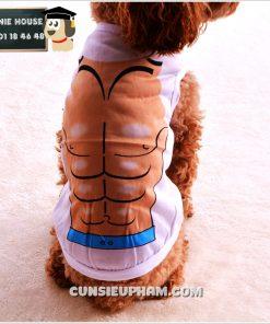 Junie House chuyên cung cấp quần áo, phụ kiện cho thú cưng: Trang phục superman, cướp biển, minions, áo thun cơ bắp cho chó mèo   0901.18.46.48