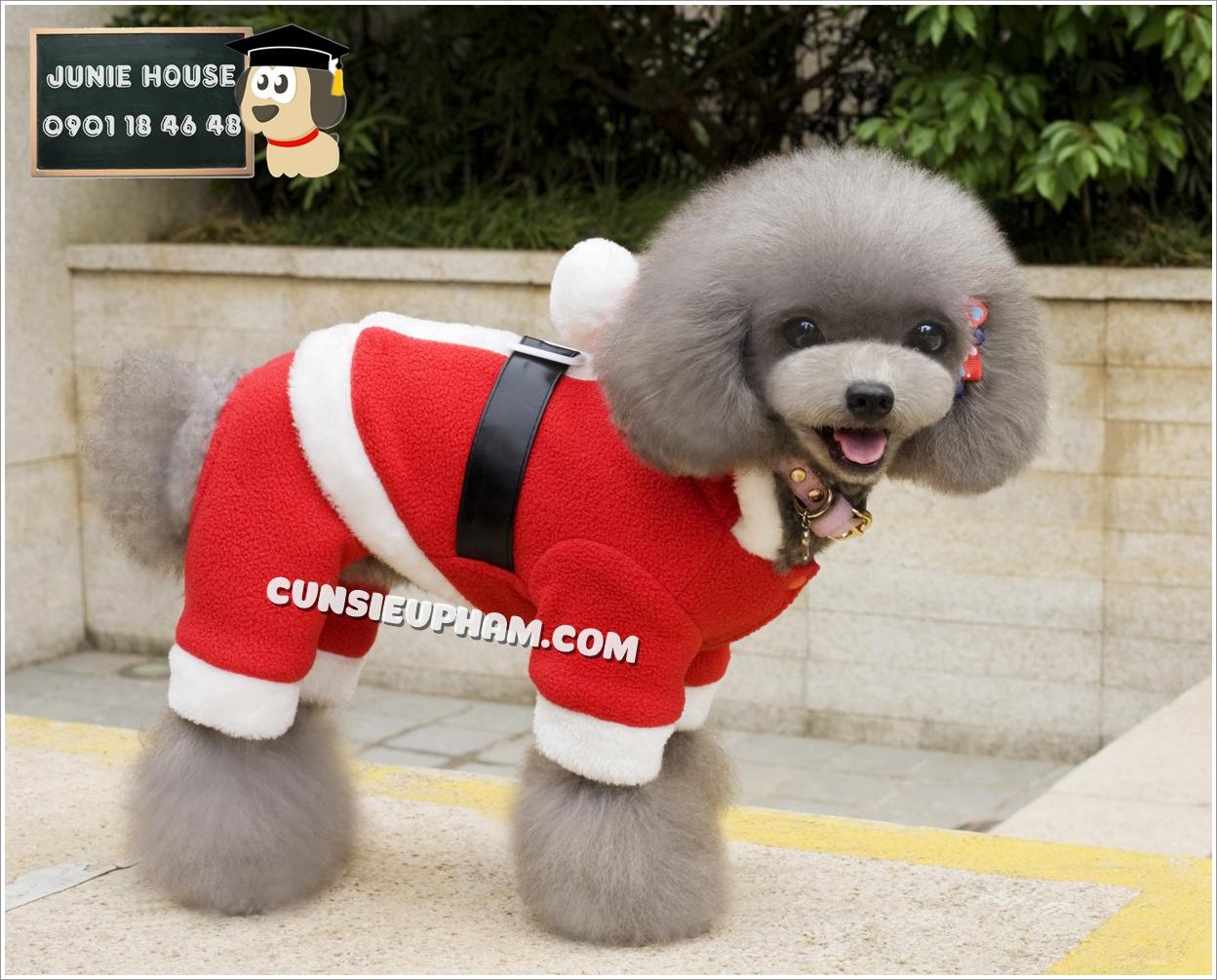 Junie House chuyên cung cấp trang phục cosplay cho chó mèo như áo Adidacog có mũ, hiệp sĩ cao bồi, trang phục Superman, Cướp biển, đồ ông già noel cho chó mèo... Hotline 0901 18 46 48