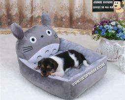 Junie House chuyên cung cấp trang phục cosplay cho chó mèo như áo Adidacog có mũ, hiệp sĩ cao bồi, trang phục Superman, Cướp biển, nệm hình Totoro cho chó mèo... Hotline 0901 18 46 48