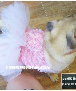 Junie House chuyên cung cấp các sản phẩm cho chó mèo như: Quần áo cho chó, quần áo chó mèo, phụ kiện chó mèo, váy ren hồng cho chó mèo Hotline 0901 18 46 48
