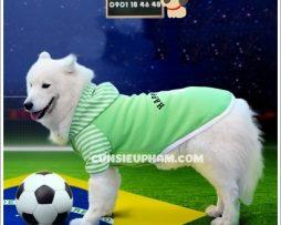 Junie House chuyên cung cấp quần áo cho chó, quần áo chó mèo, đồ chơi cho chó mèo, phụ kiện cho chó mèo, áo Happy pet cho chó lớn... Hotline 0901 18 46 48