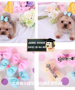 Junie House chuyên cung cấp quần áo cho chó, quần áo chó mèo, đồ chơi cho chó mèo, phụ kiện cho chó mèo, kẹp tóc nơ cho chó mèo... Hotline 0901 18 46 48