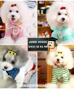 Junie House chuyên cung cấp quần áo cho chó, quần áo chó mèo, đồ chơi cho chó mèo, phụ kiện cho chó mèo, kẹp tóc kính mát cho chó mèo... Hotline 0901 18 46 48