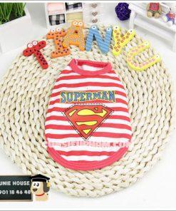 Junie House chuyên cung cấp quần áo, phụ kiện cho thú cưng: Trang phục superman, cướp biển, minions, áo thun 3 lỗ cho chó mèo nhỏ   0901.18.46.48