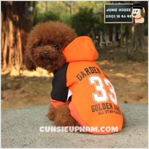 Junie House chuyên cung cấp quần áo, phụ kiện cho thú cưng: Trang phục superman, cướp biển, minions, áo thun có mũ cho chó mèo   0901.18.46.48v
