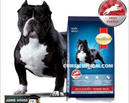 Junie House chuyên cung cấp quần áo cho chó, quần áo chó mèo, đồ chơi cho chó mèo, phụ kiện cho chó mèo, thức ăn cho chó lớn power pack... Hotline 0901 18 46 48