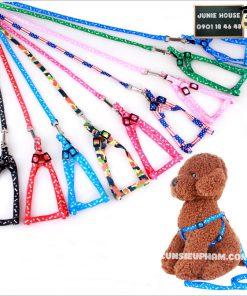 Junie House chuyên cung cấp quần áo, phụ kiện cho thú cưng: Trang phục superman, cướp biển, minions, dây dắt yếm cho chó | 0901.18.46.48
