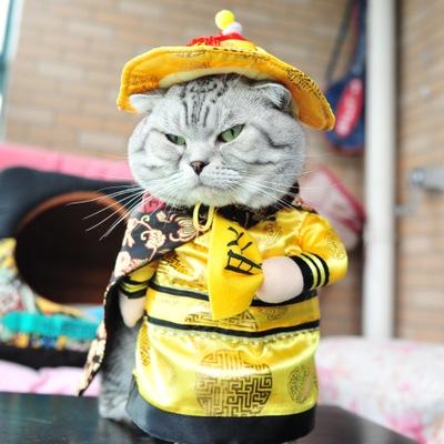 Junie House chuyên cung cấp quần áo cho chó, quần áo chó mèo, đồ chơi cho chó mèo, phụ kiện cho chó mèo, trang phục vua vi hành cho chó mèo ... Hotline 0901 18 46 48