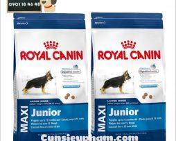 Junie House chuyên cung cấp quần áo cho chó, quần áo chó mèo, đồ chơi cho chó mèo, thức ăn cho chó royal canin maxi junior... Hotline 0901 18 46 48