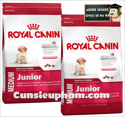 Junie House chuyên cung cấp quần áo cho chó, quần áo chó mèo, đồ chơi cho chó mèo, thức ăn cho chó royal canin medium junior... Hotline 0901 18 46 48
