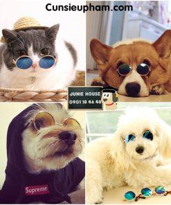 Junie House chuyên cung cấp quần áo cho chó, quần áo chó mèo, đồ chơi cho chó mèo, kính mát cho chó mèo nhỏ... Hotline 0901 18 46 48