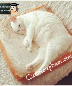 Junie House chuyên cung cấp quần áo, phụ kiện cho thú cưng: Trang phục superman, cướp biển, minions, nệm bánh mì cho chó mèo | 0901.18.46.48