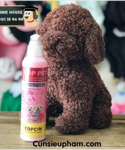 Junie House chuyên cung cấp quần áo cho chó, quần áo chó mèo, đồ chơi cho chó mèo, sữa tắm top pet dành cho chó mèo... Hotline 0901 18 46 48