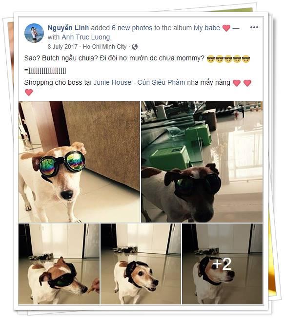 Feedback khách hàng về kính mát - Junie House | Cún Siêu Phàm