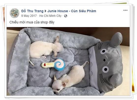 Feedback khách hàng Thu Trang - Junie House | Cún Siêu Phàm