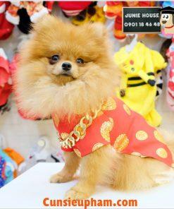 Junie House chuyên cung cấp các loại quần áo phụ kiện cho chó mèo như: đồ tết cho chó mèo,, áo dài tết dành cho chó mèo ... Hotline 0901184648