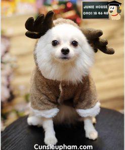 Junie House chuyên cung cấp quần áo cho chó, quần áo chó mèo, áo tuần lộc dành cho chó mèo nhỏ... Hotline 0901 18 46 48