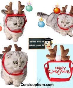 Junie House chuyên cung cấp quần áo cho chó, quần áo chó mèo, cái tuần lộc noel dành cho chó mèo nhỏ... Hotline 0901 18 46 48