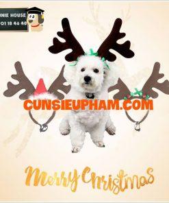 Junie House chuyên cung cấp quần áo cho chó, quần áo chó mèo, bờm tuần lộc dành cho boss... Hotline 0901 18 46 48