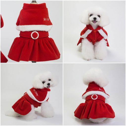 Junie House chuyên cung cấp các loại quần áo phụ kiện cho chó mèo như: đồ tết cho chó mèo, đồ Halloween cho chó mèo, đồ Noel cho chó mèo. váy merry christmas dành cho chó mèo... Hotline 0901184648