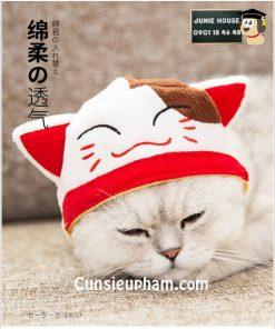 Junie House chuyên cung cấp quần áo cho chó, quần áo chó mèo, đồ chơi cho chó mèo, nón mèo may mắn cho chó mèo... Hotline 0901 18 46 48