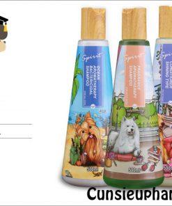 Junie House chuyên cung cấp quần áo, phụ kiện cho thú cưng: Trang phục superman, cướp biển, minions, sữa tắm nước hoa dành cho chó | 0901.18.46.48