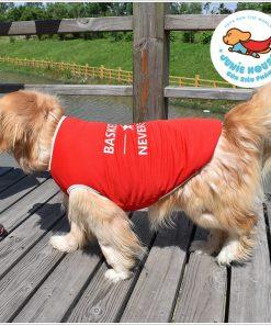 Junie House chuyên cung cấp quần áo, phụ kiện cho thú cưng: Trang phục superman, cướp biển, minions, áo basketball dành cho chó lớn | 0901.18.46.48