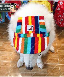 Junie House chuyên cung cấp quần áo, phụ kiện cho thú cưng: Trang phục superman, cướp biển, minions, nón lưỡi trai dành cho chó mèo | 0901.18.46.48