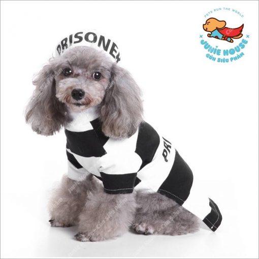 Junie House chuyên cung cấp quần áo, phụ kiện cho thú cưng: Trang phục superman, cướp biển, minions, áo hoodie supreme dành cho chó mèotrang phục cosplay prisoner dành cho chó mèo01.18.46.48